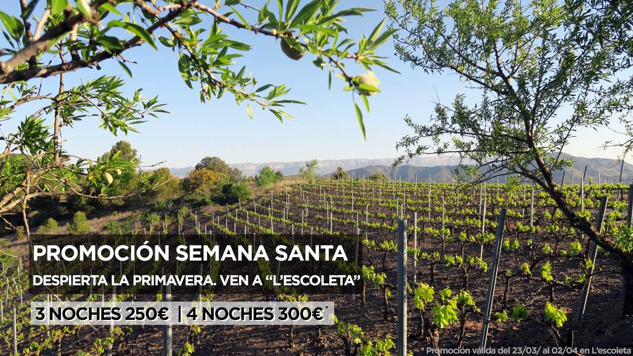Semana_Santa_Baronia